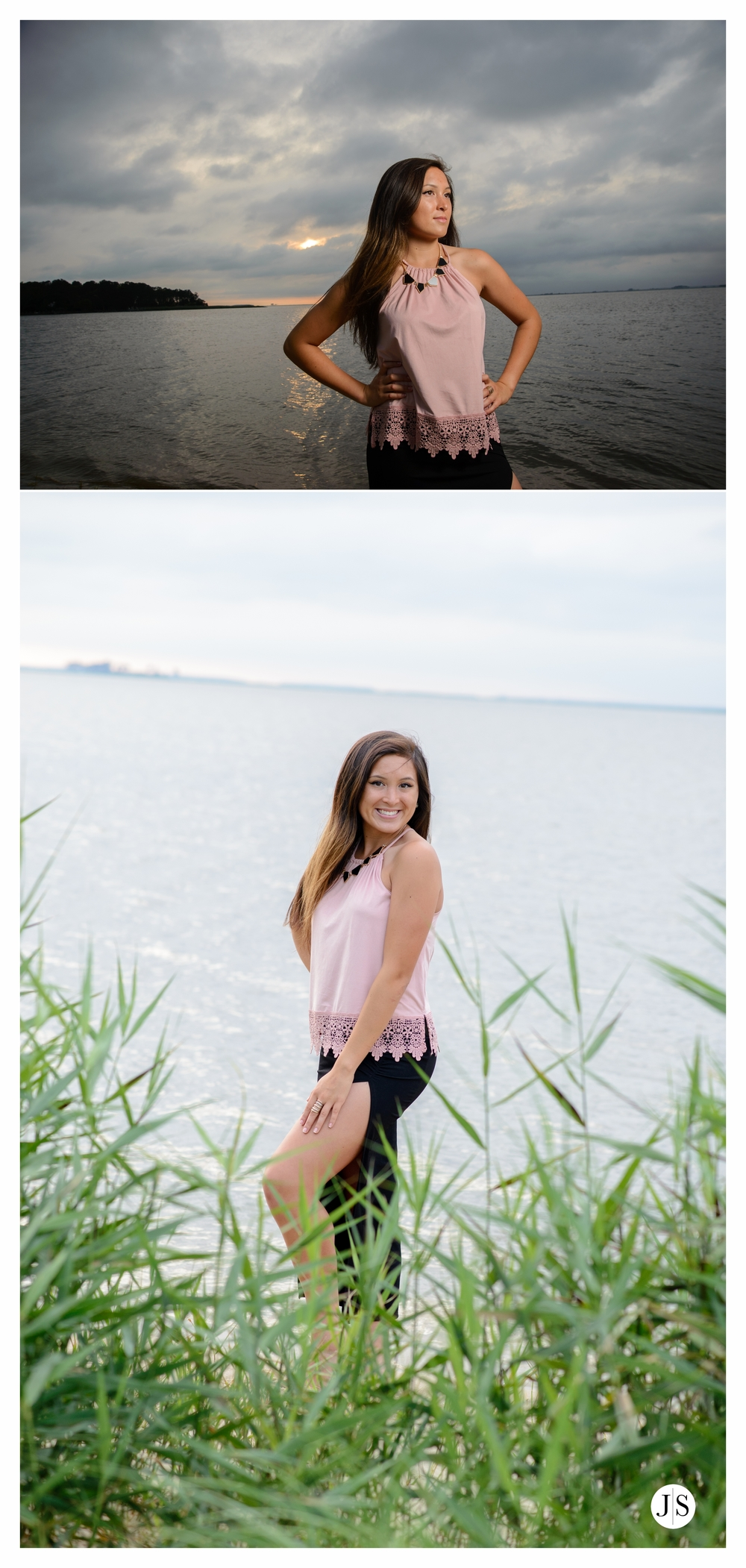 springer blog collage 14.jpg