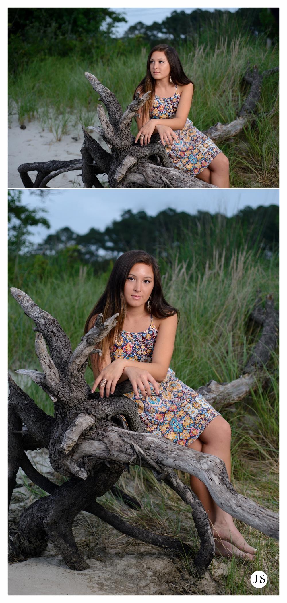 springer blog collage 20.jpg