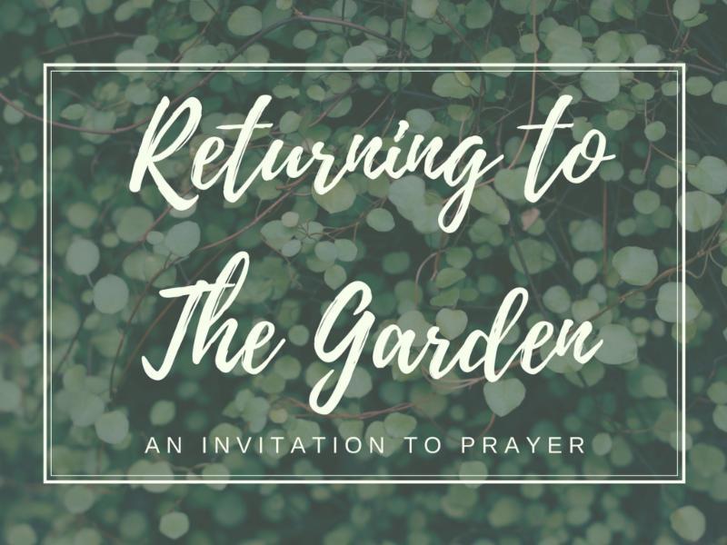 Returning tothe Garden-2.jpg