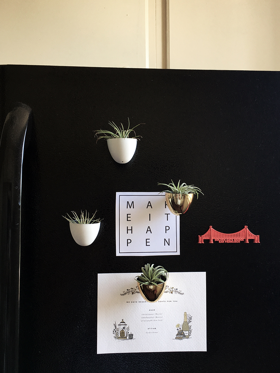 air-plant-holder-fridge-magnet