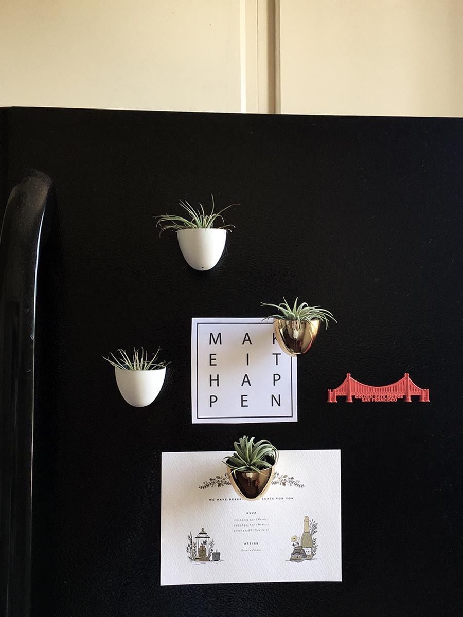 air-plant-holder-fridge-magnet