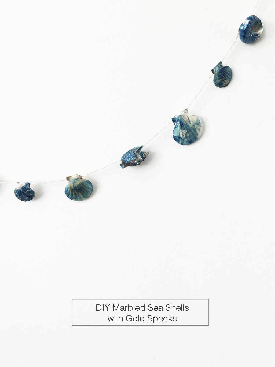 drawntodiy-marbled-seashells01