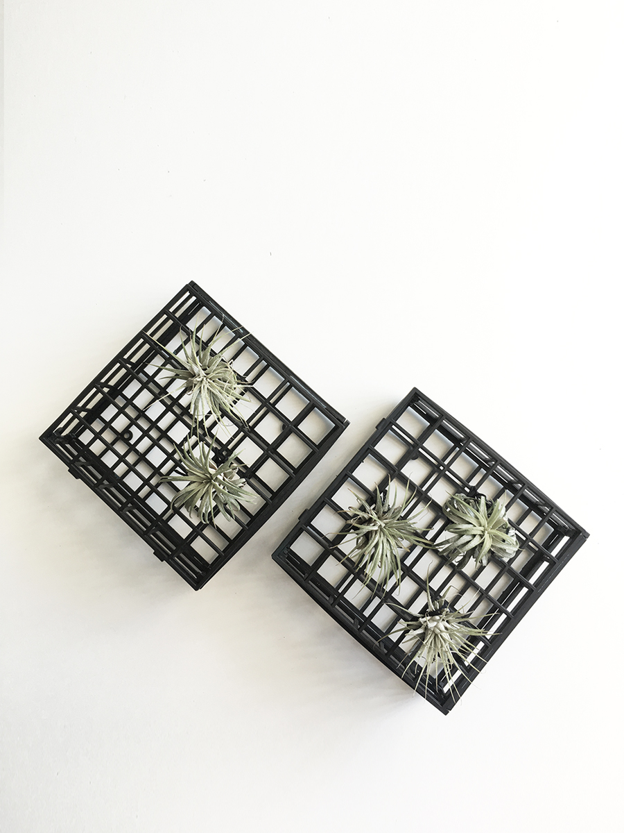 grid-air-plant-wall-hanging-05