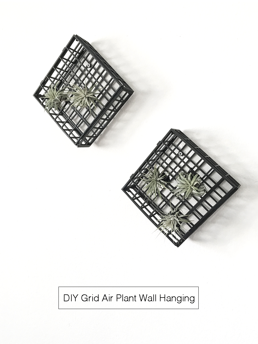 grid-air-plant-wall-hanging-01