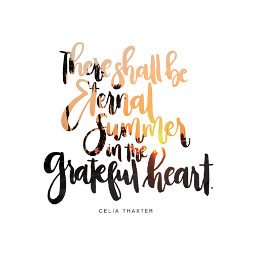 eternal summer quote