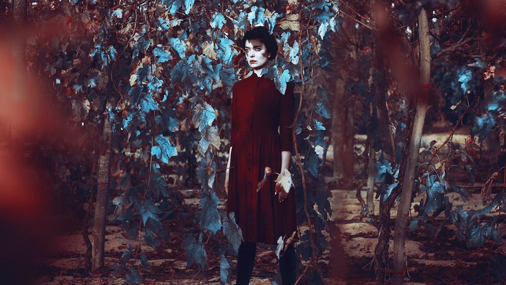 My Fair Lady-Killer II.jpg