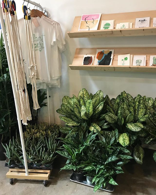 Happy Sunday! @thegoodfill is back today ready to load you up with bath + body refills. And we're ready to help you find your new best plant.