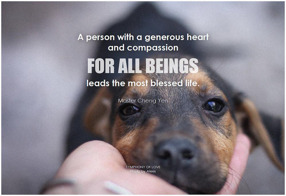 drawn to generosity