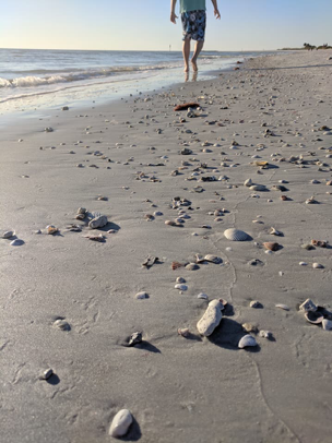 Walking on beach.