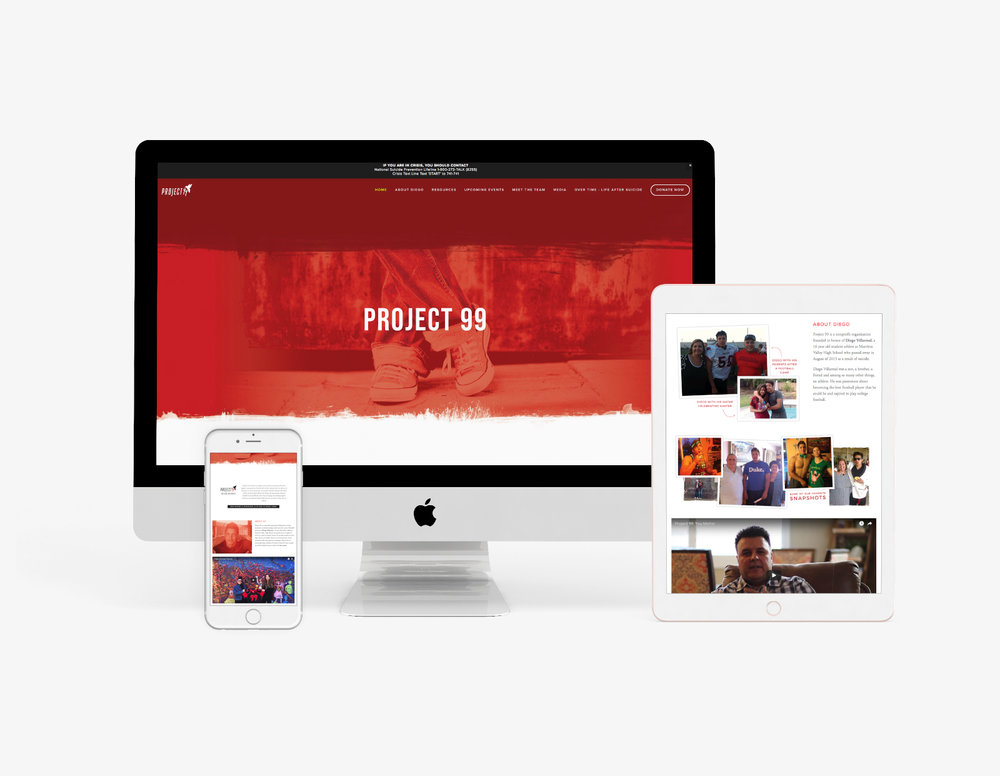 Project 99 Holly Avenue Designs Madison Wisconsin Branding Web Design
