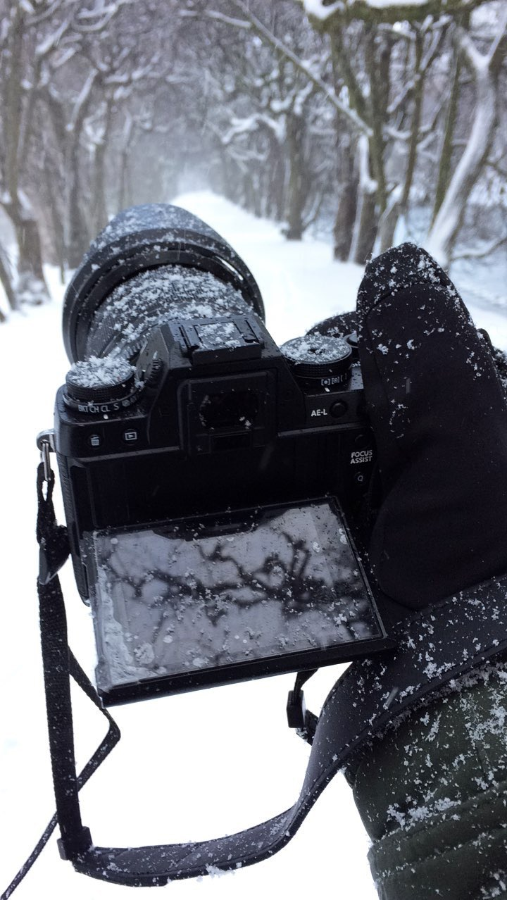 My Fujifilm X-T1 in a blizzard.