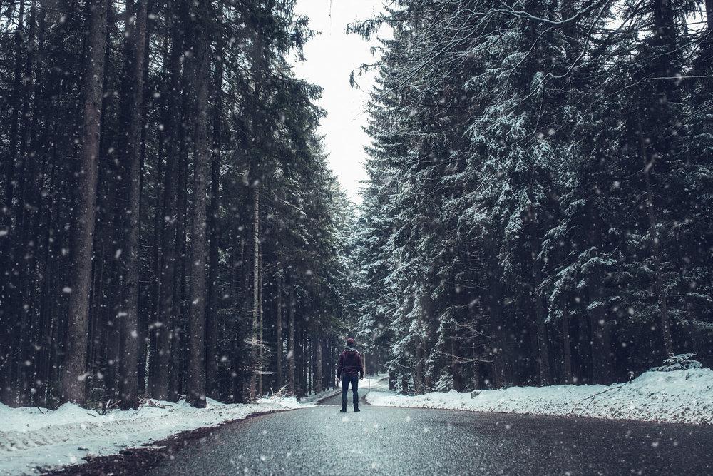 Snow Black Forest.jpg