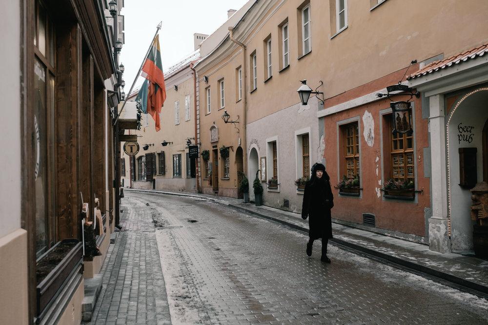 MTD_Vilnius & Trakai_2018_109_EXP.jpg