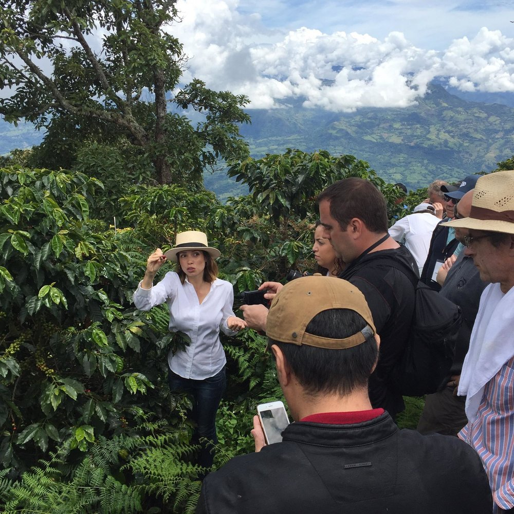 Villa Sofia Farm in Jerico, Antioquia