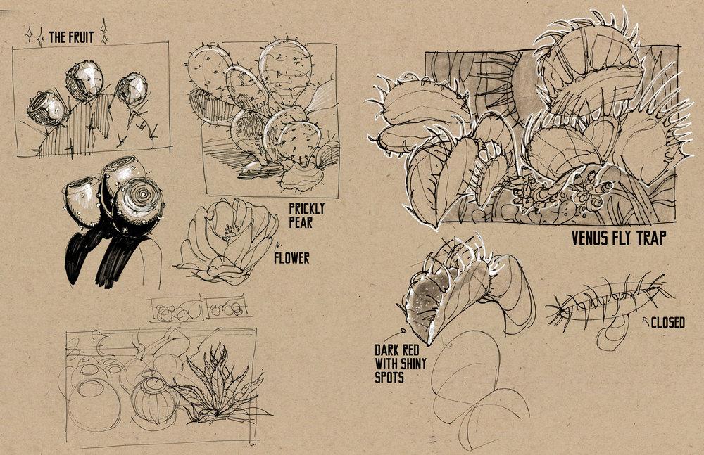 plants04.jpg