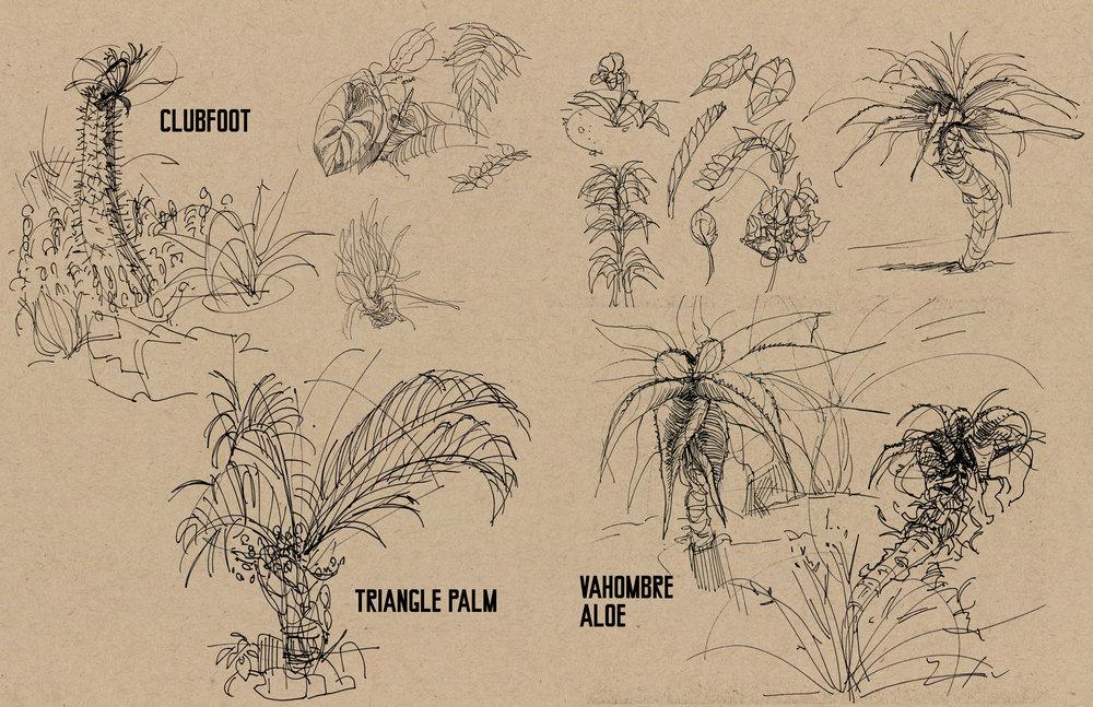 plants02.jpg
