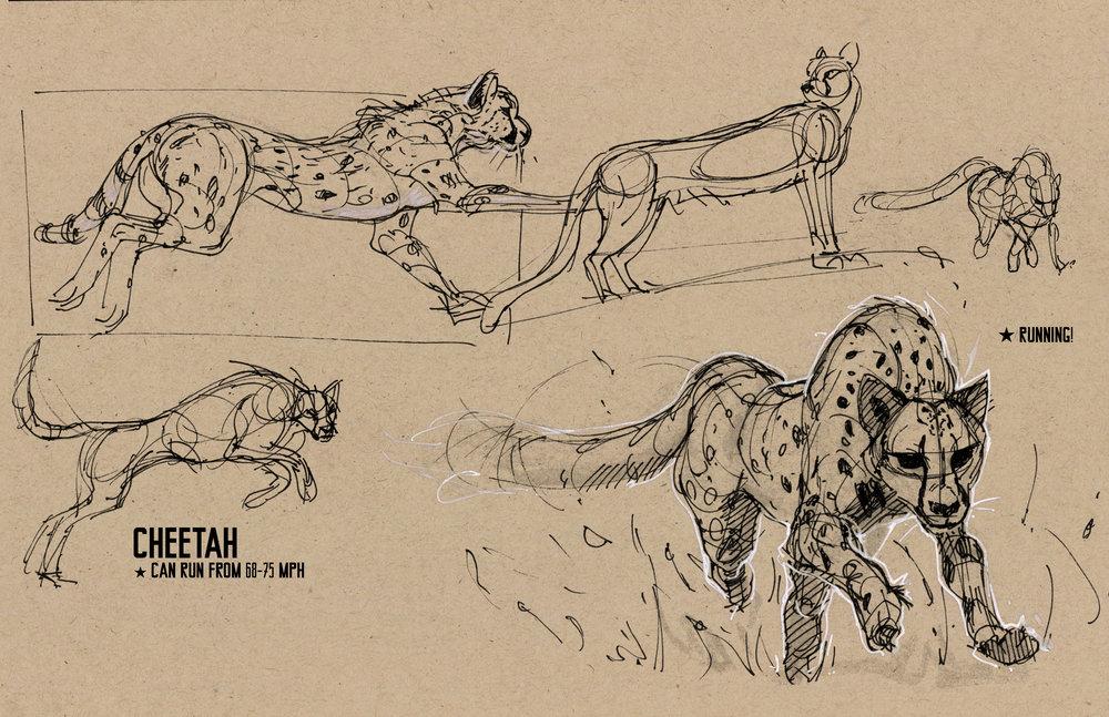 animals05.jpg