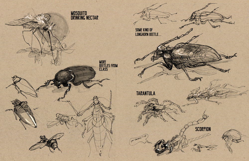 bugs03.jpg