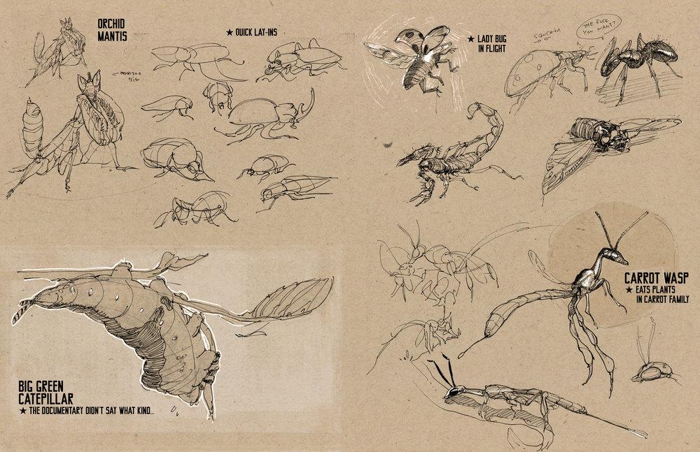 bugs02.jpg