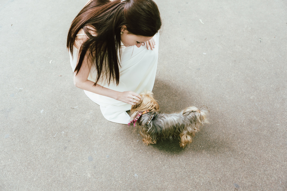 Photographer in Paris, Montmartre, Lovestory, puppy, iheartparisfr
