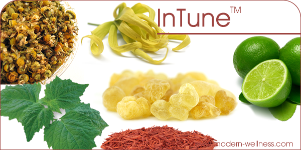 InTune-blog-header