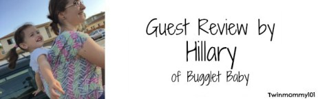 guest post banner- hil thistle