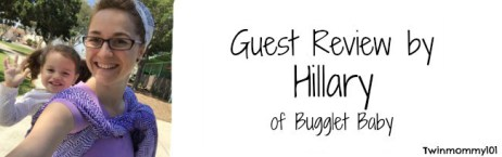 guest post banner- hil twilight