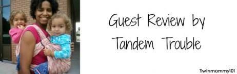 guest post banner- tt pumpkin