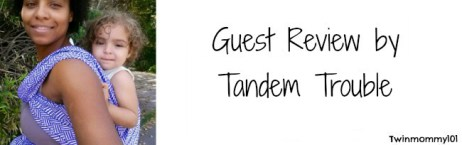 guest post banner- tt twilight