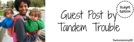 tt guest post banner ll