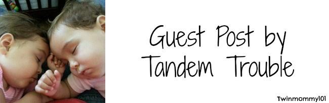 tt guest post banner