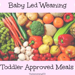 blwtoddler-meals-imagec137.jpg