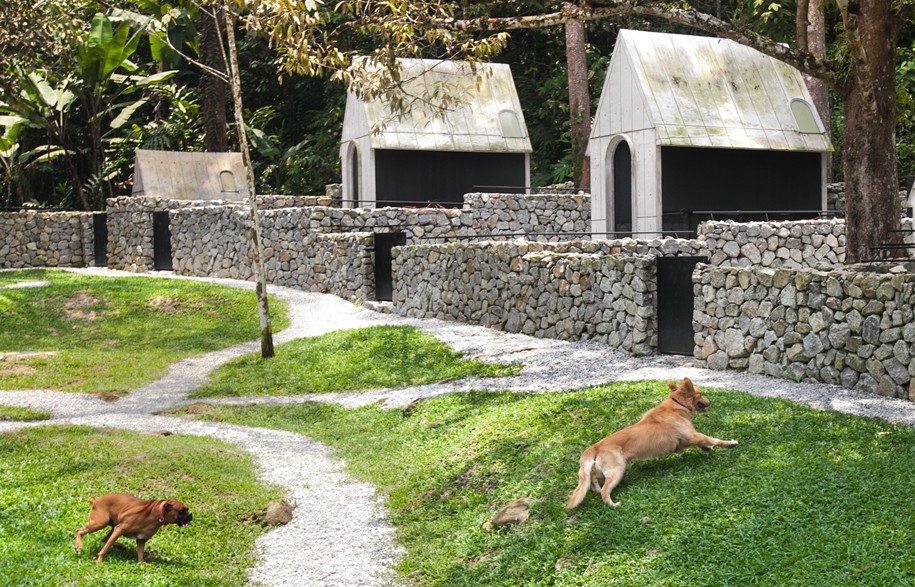 Set in 4 acres of jungle on the edge of a nature reserve, your pup will never want to leave Dog House Broga.