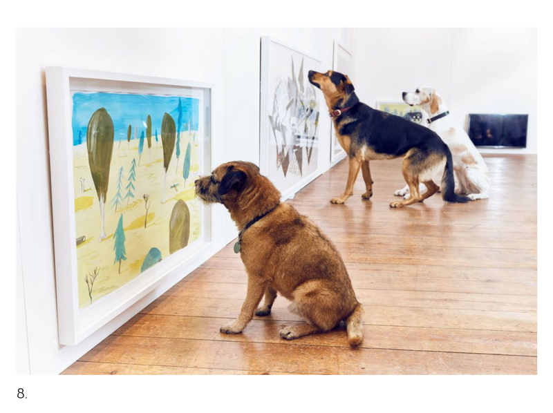 Dominic Wilcox's Art Show for Dogs.
