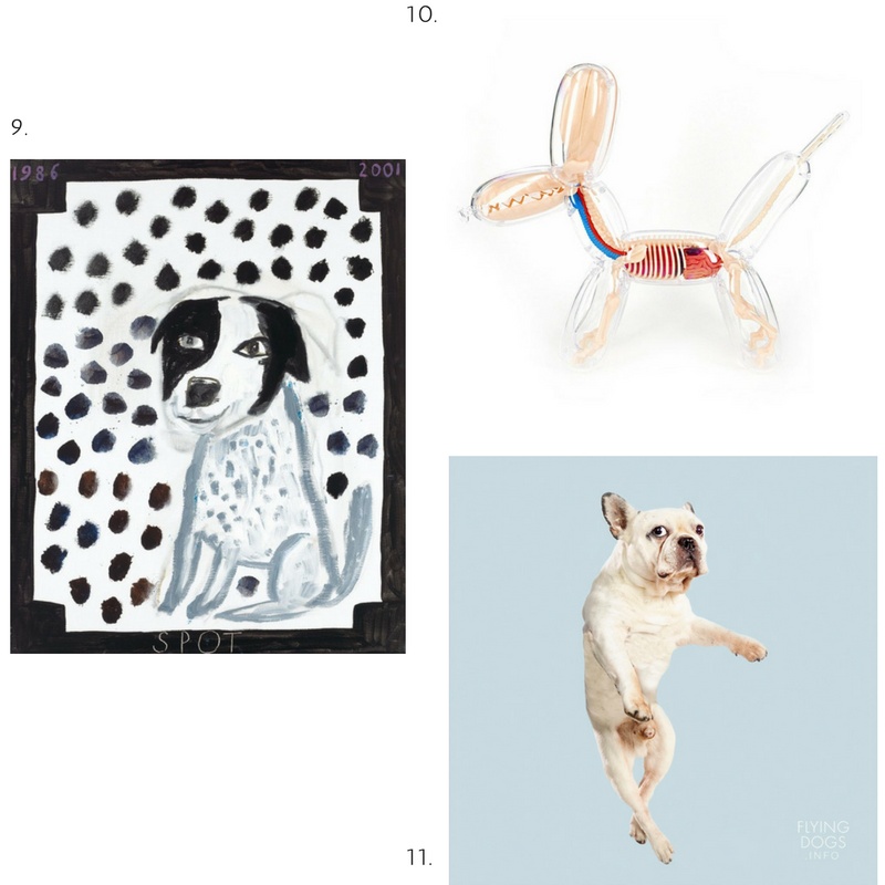 9. Spot, Ken Done. 10. Balloon Dog Anatomy, Jason Freeney. 11. Flying Dog Book, Julia Christe.