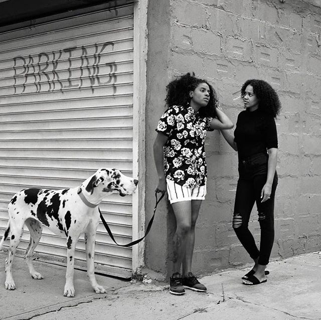 "The photographer Amit Elkayam is allergic to some dogs, but he decided to subsist on Benadryl in order to capture Hendrix, a three-year-old harlequin Great Dane, and her humans, Kristina Justice and Talisa Smith, several times over a year. In the images, Hendrix (after Jimi) takes on an almost human quality, as if she were simply a third member of Justice and Smith's domestic partnership, gathering to blow out candles on a birthday cake or primping for a night out. From the series ""Big Dog in a Big City"" by @amitelk. 📷 @amitelk via @newyorkermag"