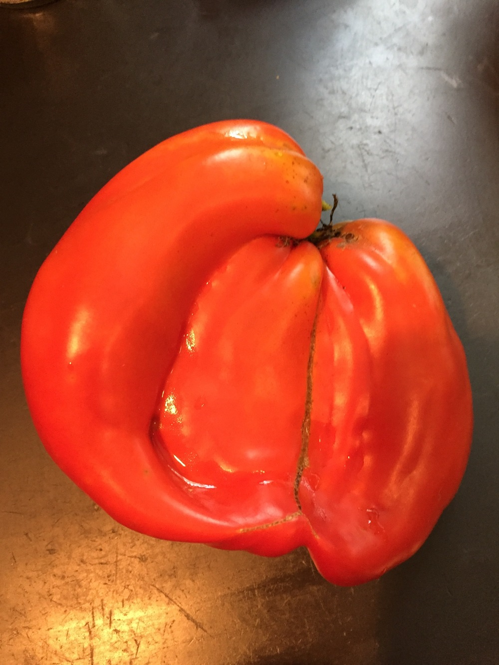 one funky tomato