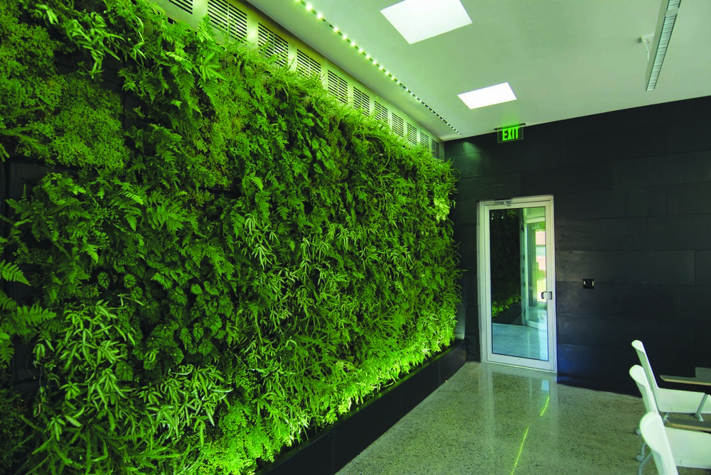 19 Interior View of West Classroom Greenwall.jpg