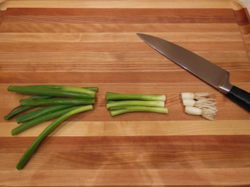 Green onion tops - left