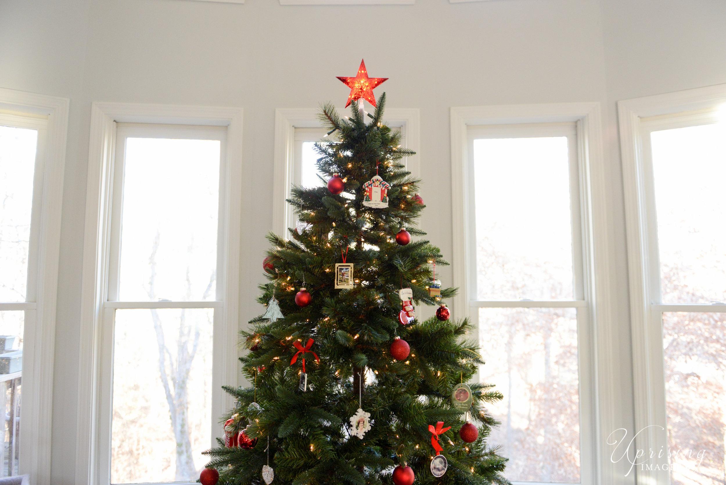 Merry Christmas | Uprising at Home | 2016 — Uprising ImageryUprising ...