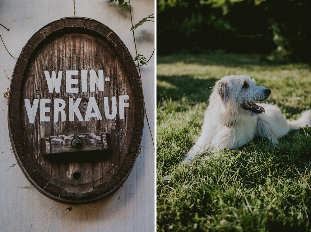 Hochzeit Landau Klostergut Heilsbruck Hochzeitsfotograf Mannheim