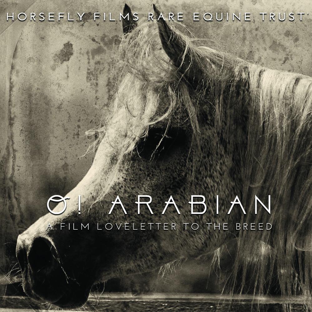 OArabian front.jpg