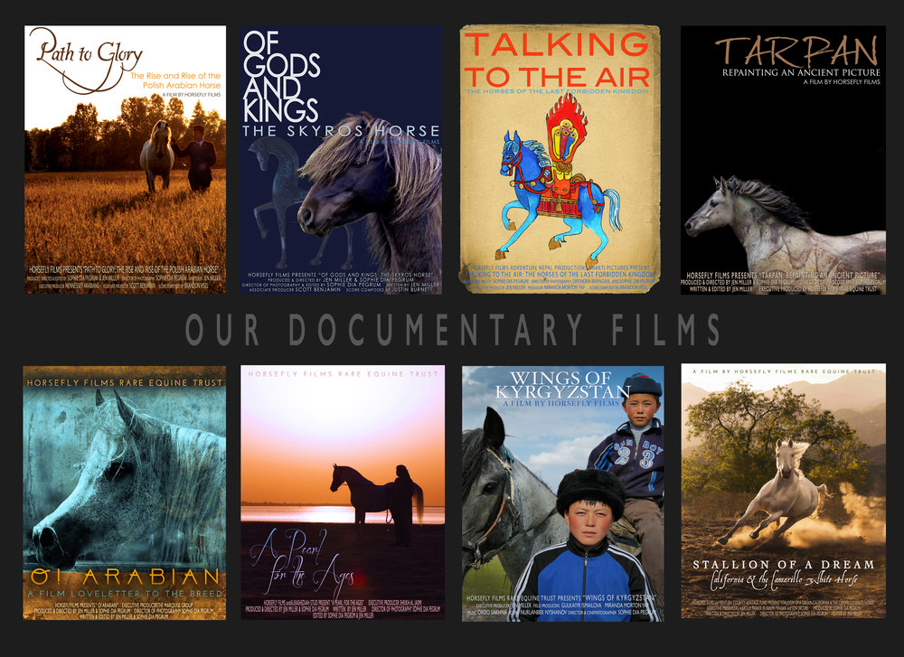 Our Documentary Films.jpg