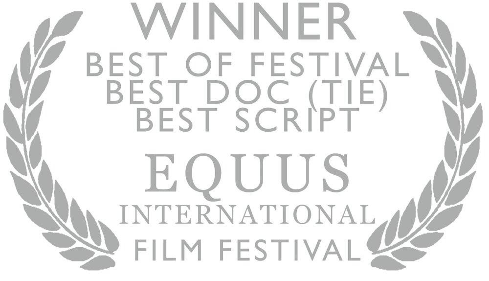 TTTA Equus Intl wins silver.png