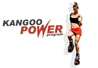 Kangoo Power.JPG