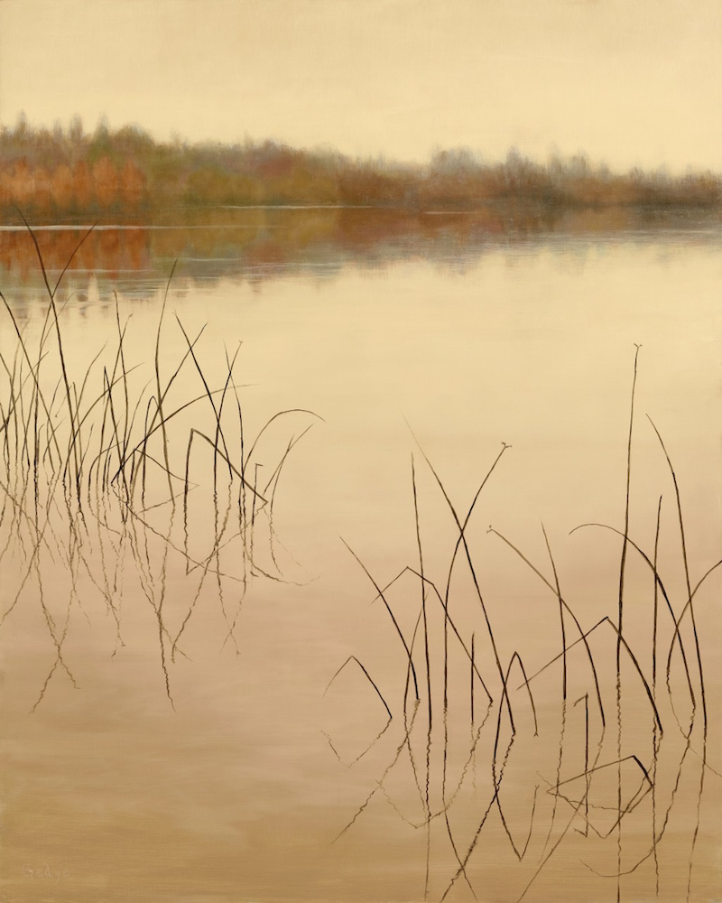 Reeds and Fog