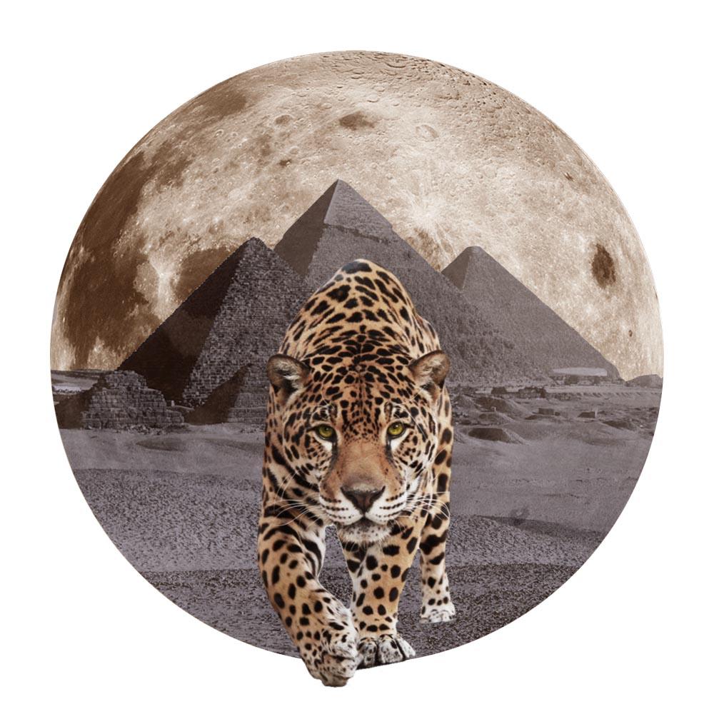 jaguar copy.jpg