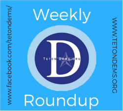 Weekly Roundup (1).png