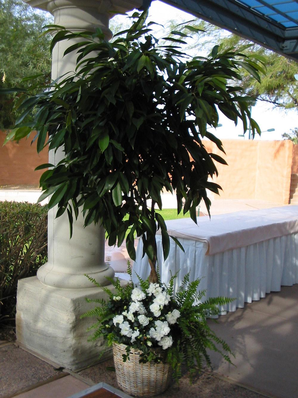 Wedding_004[1].jpg