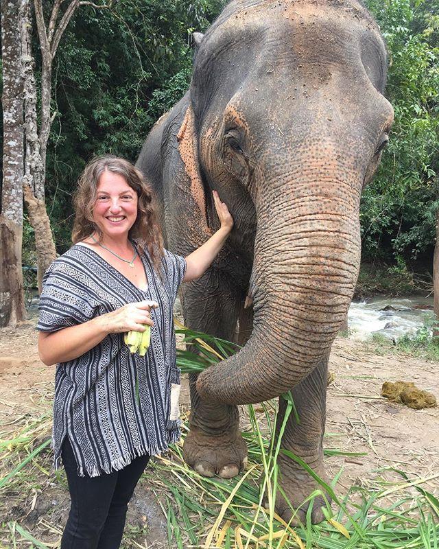 Just having a little sleepover with some elephants... 😍🐘😍🐘😍🐘 #elephantsanctuary #chiangmai #notinacity #ohmyheart #thailand